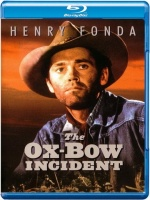 Plakat filmu Zdarzenie w Ox-Bow / The Ox-Bow Incident (1943) Lektor PL